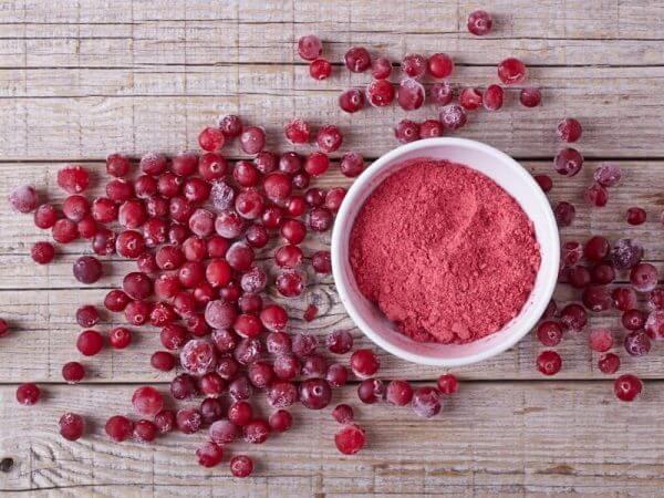 lyofood-cranberry-powder